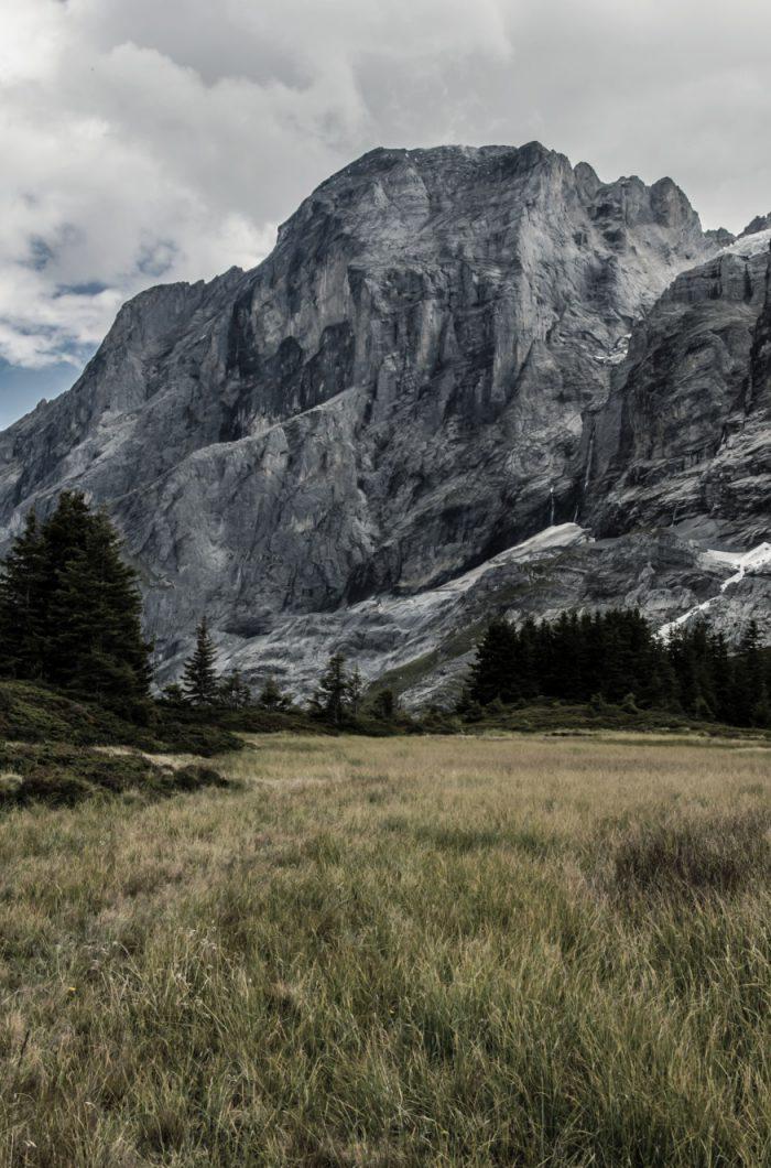 Grindelwald_SmallerSize